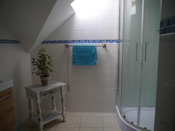 La Saule - shower room