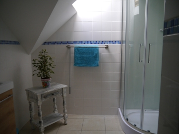 La Saule - shower room