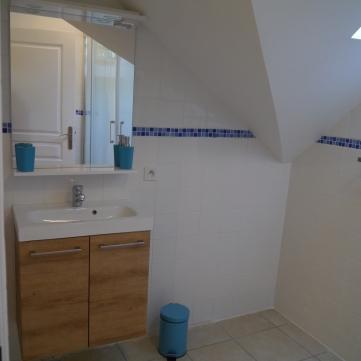 La Saule - shower room .